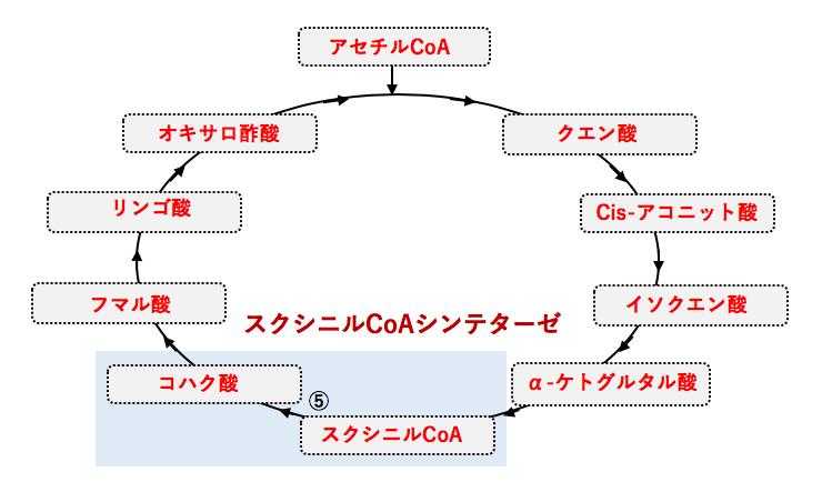 オキサロ 酢酸